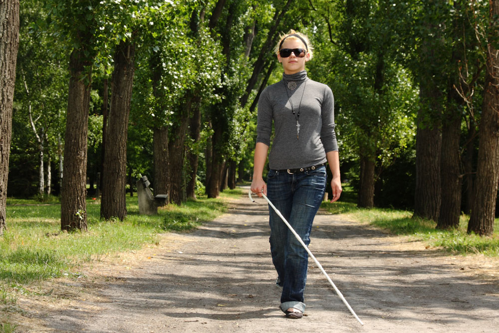 Humanware Blindness Low Vision Aids For Macular